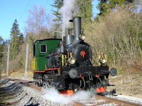 """""""Hansli"""" unterwegs zwischen Sihlwald und Sihlbrugg, Foto Hans Ruedi Sennhauser"""